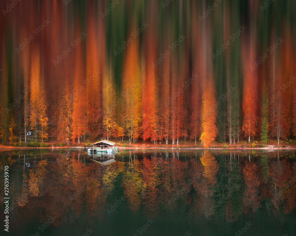 Fototapety, obrazy: Motion blur autumn forest and water reflection
