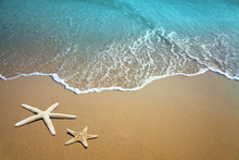 Two Starfish On Beach. Sand And Sea Wave.