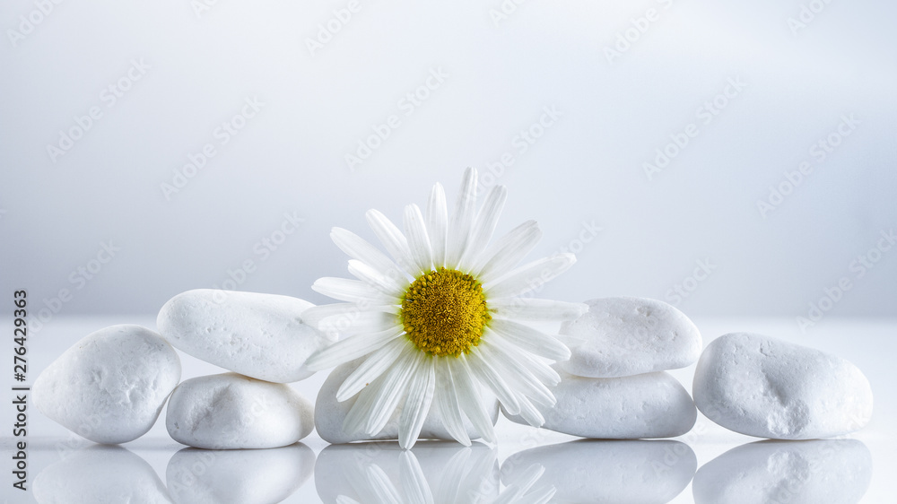 Fototapeta Flower daisies on a white stones pyramid for spa, a holiday concept, or chamomile tea.