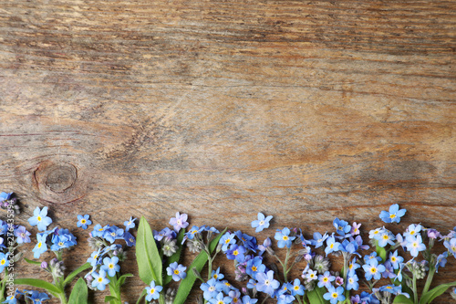 Printed kitchen splashbacks Floral Beautiful forget-me-not flowers and space for text on wooden background, flat lay