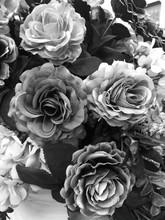 Fake Rose Flower Black And Whi...