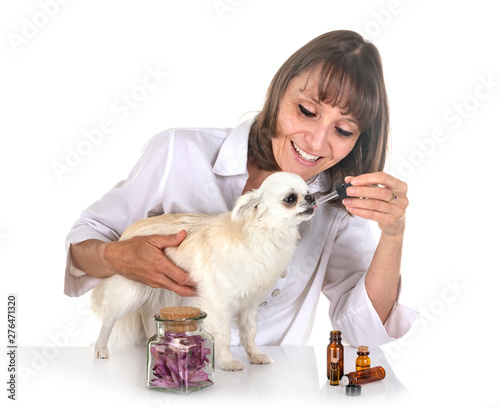Poster Ouest sauvage alternative medicine for dog