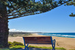 Coila Beach bench - Tuross Head 2537