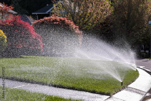 Obraz Water sprays from an automatic lawn sprinkler system over green lawn on a sunny day. - fototapety do salonu