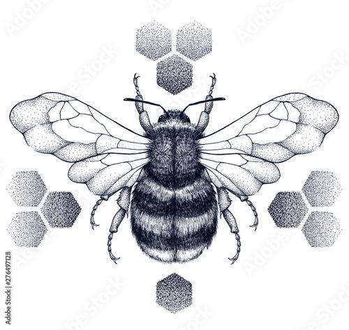 Fototapeta Striped honey bee sits on honeycombs. Tattoo.T-shirt illustartion