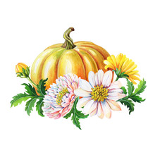Orange Pumpkin,chrysanthemums....
