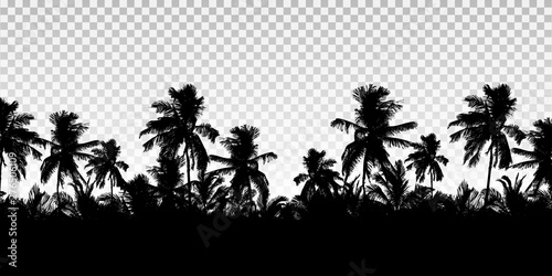 Realistic illustration of a horizon from the tops of palm trees Canvas Print