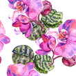 canvas print picture - Orchid floral botanical flower. Watercolor background illustration set. Seamless background pattern.