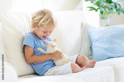 Fototapeta Child playing with baby cat. Kid and kitten. obraz na płótnie