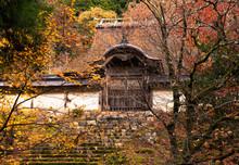 美しい日本の紅葉 京...