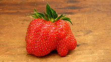 A Big Wonky Red Strawberry On ...