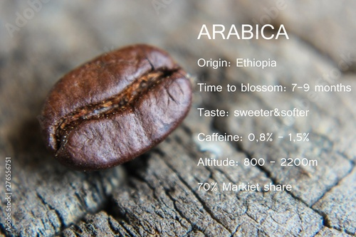 Arabica seeds with descriptions of Arabica coffee beans