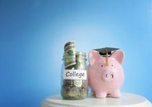 College Savings Fund Piggy Bank