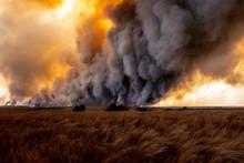 Prairie Wildfire