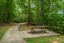 Picnic Tables And Grills At The Park