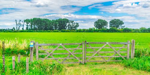 Cuadros en Lienzo Fence in Dutch polder landscape