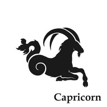 Capricorn Zodiac Sign Astrolog...