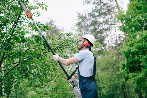 Slika na platnu gardener in helmet and overalls trimming trees with telescopic pole saw in garde