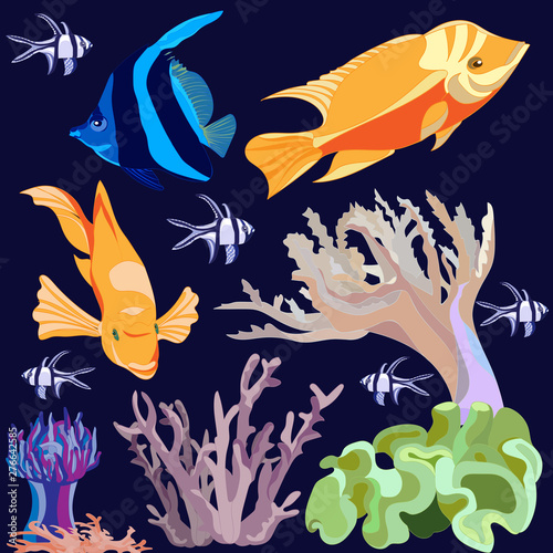 Photo set of images of bright exotic fish , coral , actinium isolated on dark blue bac