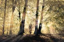 Fantôme Sortant De La Forêt - Apparition Spectrale Et Douce - Lumière
