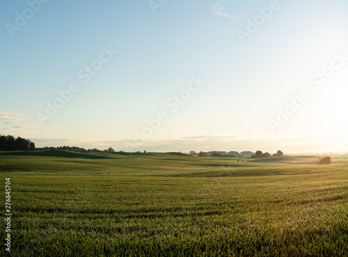 Foto auf Gartenposter Landschaft Fields in Skåne, Sweden