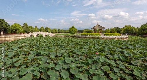 Valokuvatapetti Garden with lotus in the pond in the Confucian Temple (Wenmiao), Jianshui, Yunnan, China