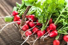 Farm Fresh Vegetables. Organic...
