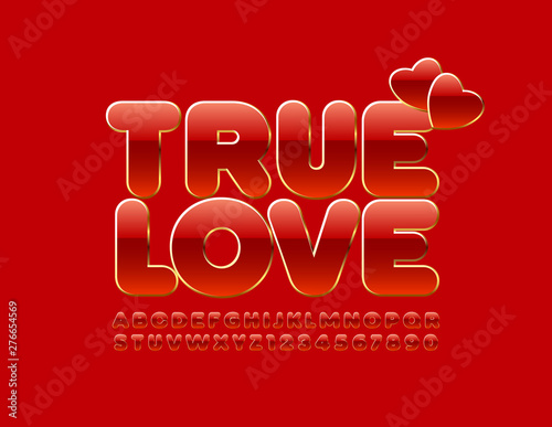 Fotografía Vector romantic card True Love with decorative hearts with Uppercase Font