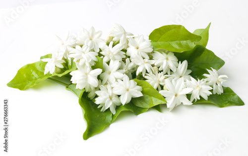 White jasmine flowers fresh flowers natural Wallpaper Mural
