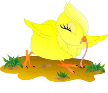 Funny Yellow Chicken Pulls A P...