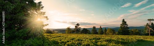 Fotomural a german Beauty Rothaar Mountains