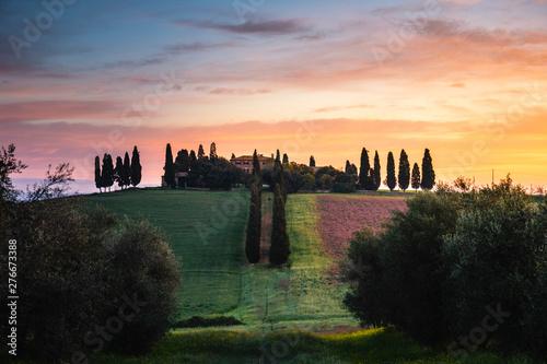 Aluminium Prints Tuscany Countryside near Pienza, Tuscany, Italy