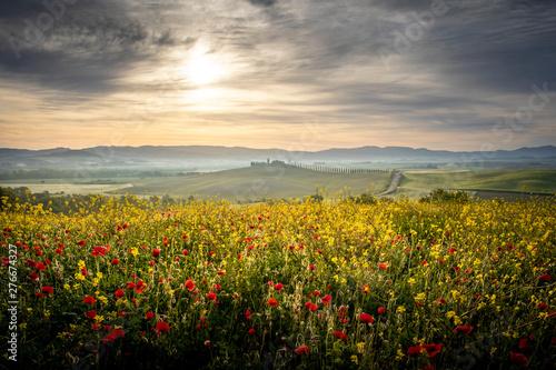 Countryside near Pienza, Tuscany, Italy - 276674327