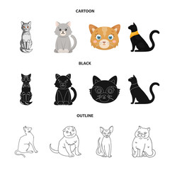 Isolated object of pet and sphynx sign. Set of pet and fun vector icon for stock.