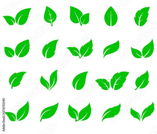 Fototapety, obrazy: green leaf icons set on white background