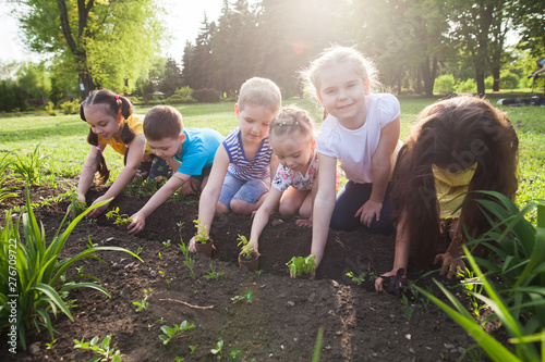 Fotografie, Obraz  Children's hands planting young tree on black soil together as the world's concept of rescue