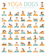 Yoga Dogs Poses And Exercises Doing Clipart. Funny Cartoon Poster Design