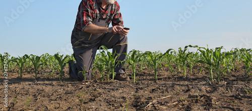 Agricultural scene, farmer in corn field Billede på lærred