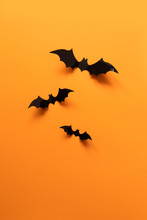 Halloween Holiday Concept With Paper Bats