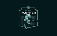 Wild Cat. Puma Or Panther.
