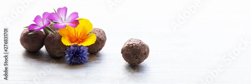 Obraz na plátně seed balls or seed bombs with various blossoms