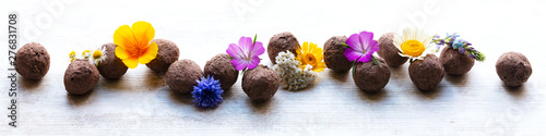 seed balls or seed bombs with various blossoms