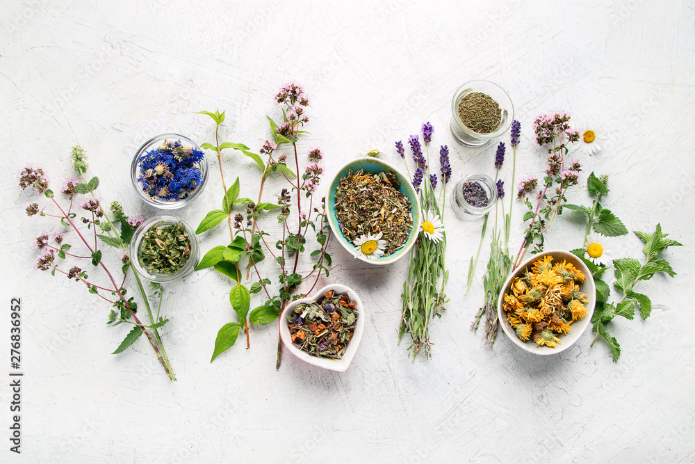Fototapety, obrazy: Various kinds of herbal tea