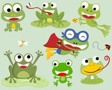 Vector Set Of Frogs Cartoon