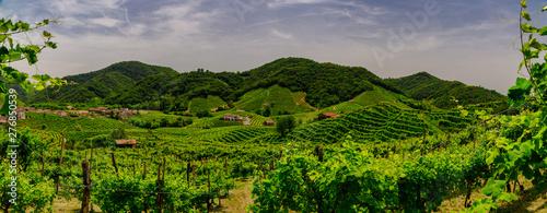 Garden Poster Vineyard Panorama of the vineyards of Prosecco vineyards