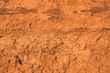 canvas print picture - The surface of the cracked dried clay background. Brown and cracked soil background. Clay. Ocher.