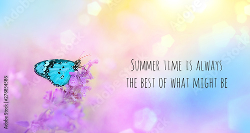 Summertime is always the best of what might be - inspiration quote. gentle summer natural landscape with lilac flowers and beautiful butterfly on summer background. soft selective focus