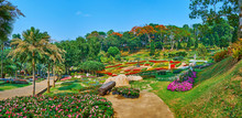 Panorama Of Mae Fah Luang Flower Beds, Doi Tung, Thailand