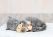 canvas print picture - Baby kitten sleeping with toy bear on the bed at home