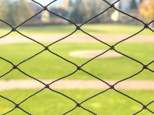 Baseball Stadium. Green Grass On Baseball Field